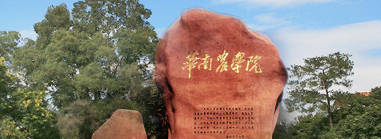 视觉传达设计自考本科华南农业大学招生简章